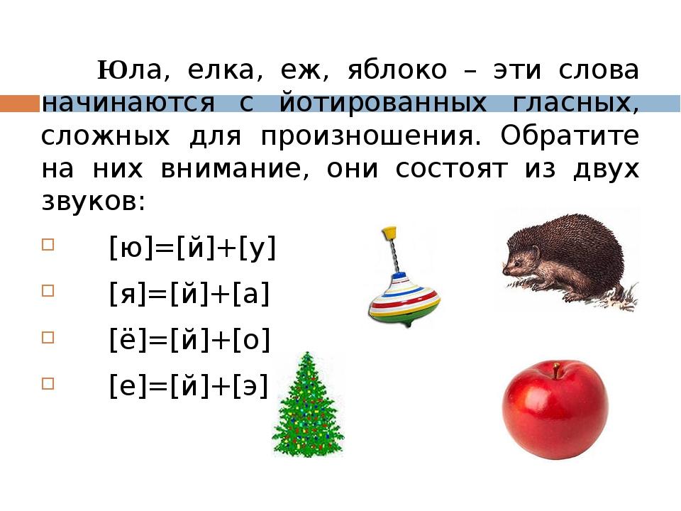 Юла, елка, еж, яблоко – эти слова начинаются с йотированных гласных, сложных...