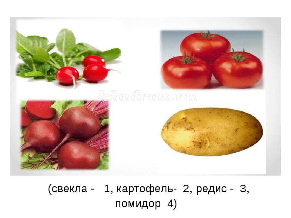 (свекла - 1, картофель- 2, редис - 3, помидор 4)
