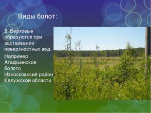 Виды болот: 2. Верховые образуются при застаивании поверхностных вод. Наприме