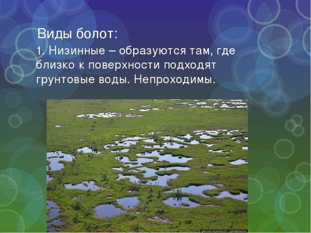 Виды болот: 1. Низинные – образуются там, где близко к поверхности подходят г...