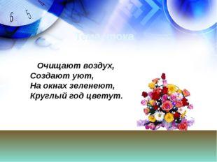 Тема урока Очищают воздух, Создают уют, На окнах зеленеют, Круглый год цветут.