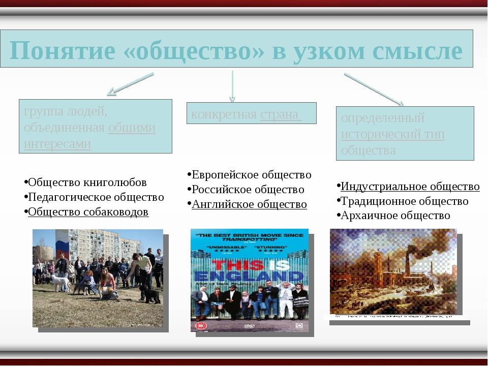Понятие «общество» в узком смысле группа людей, объединенная общими интересам...