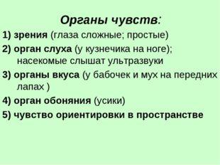 Органы чувств: 1) зрения (глаза сложные; простые) 2) орган слуха (у кузнечик
