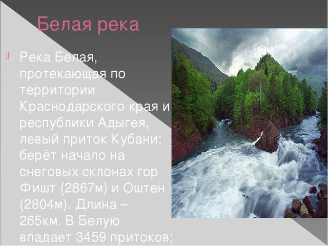 Белая река Река Белая, протекающая по территории Краснодарского края и респуб...