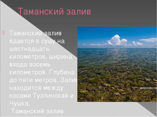 Таманский залив Таманскийзалив вдается в сушу на шестнадцать километров, шир...