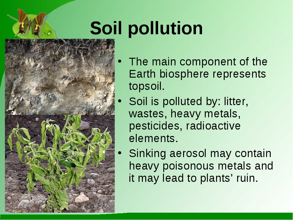 Soil pollution The main component of the Earth biosphere represents topsoil....
