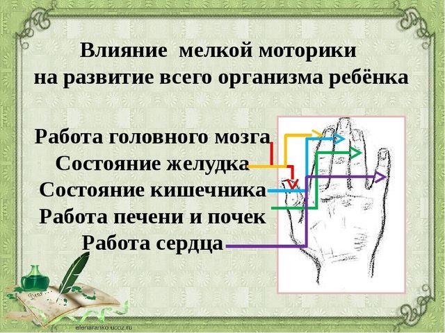 Работа головного мозга Состояние желудка Состояние кишечника Работа печени и...