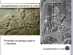Ашшурбанапал охотится на льва Ашшурбанапал в колеснице Рельефы из дворца царя