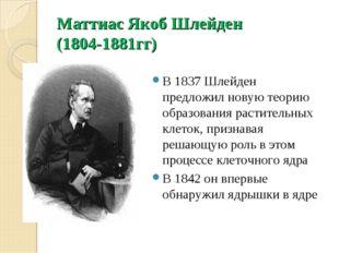 Маттиас Якоб Шлейден (1804-1881гг) В 1837 Шлейден предложил новую теорию обра