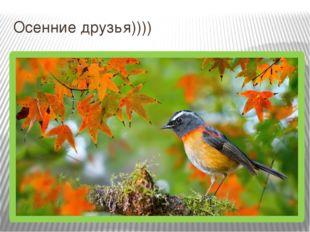Осенние друзья))))