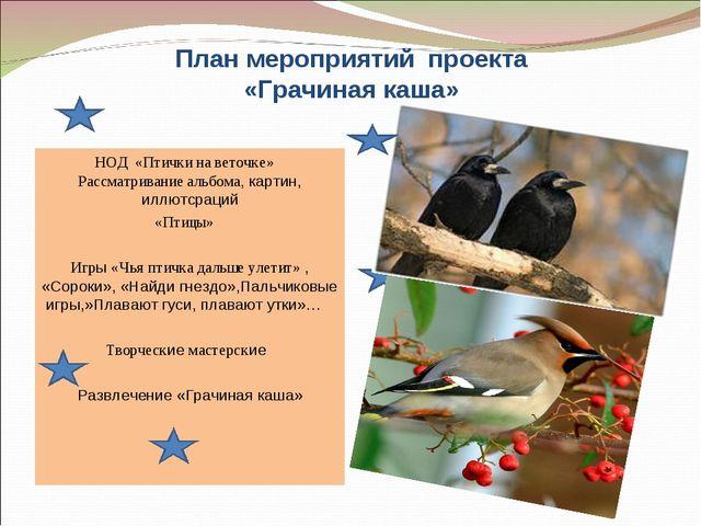 План мероприятий проекта «Грачиная каша» НОД «Птички на веточке» Рассматриван...