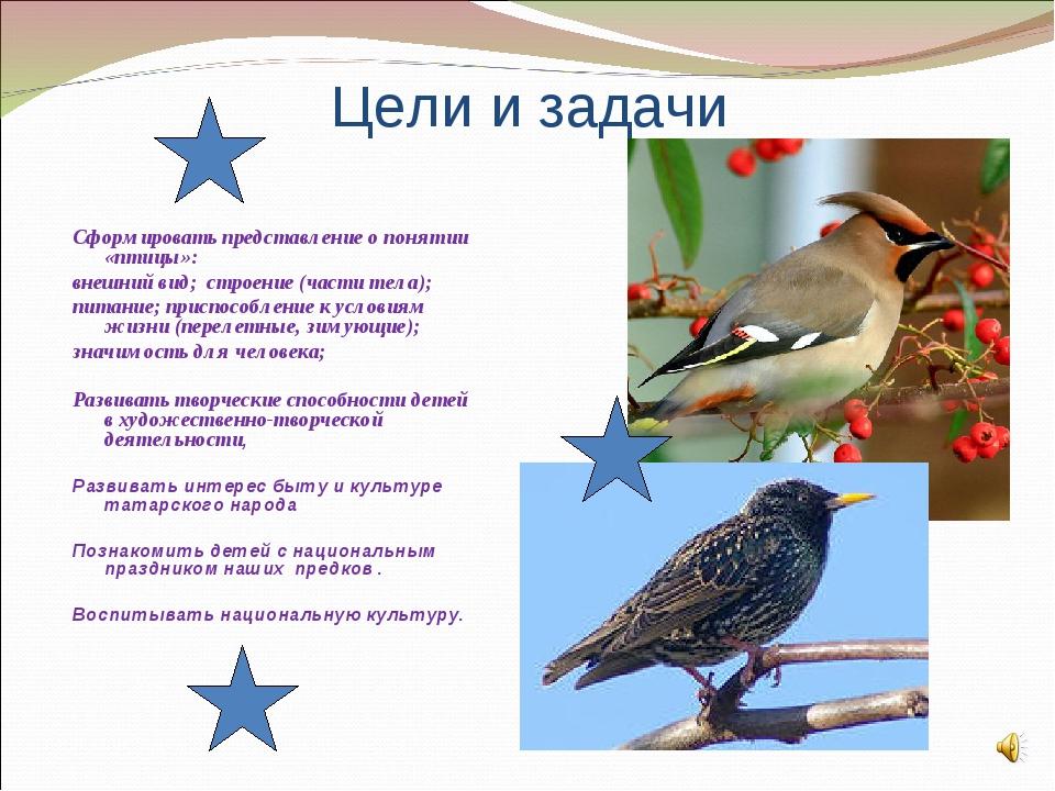 Цели и задачи Сформировать представление о понятии «птицы»: внешний вид; стр...