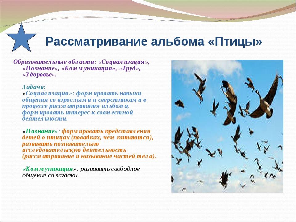 Рассматривание альбома «Птицы» Образовательные области: «Социализация», «Поз...