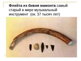 Флейта из бивня мамонта самый старый в мире музыкальный инструмент (ок. 37 ты