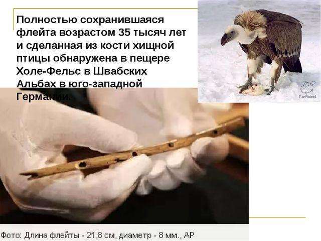 Полностью сохранившаяся флейта возрастом 35 тысяч лет и сделанная из кости хи...
