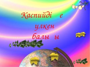 Каспийдің ең үлкен балығы