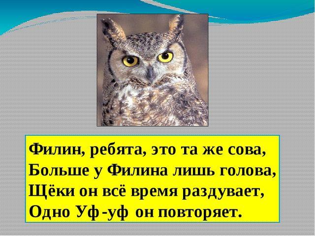 Филин, ребята, это та же сова, Больше у Филина лишь голова, Щёки он всё время...
