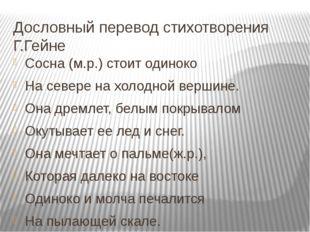 Дословный перевод стихотворения Г.Гейне Сосна (м.р.) стоит одиноко На севере