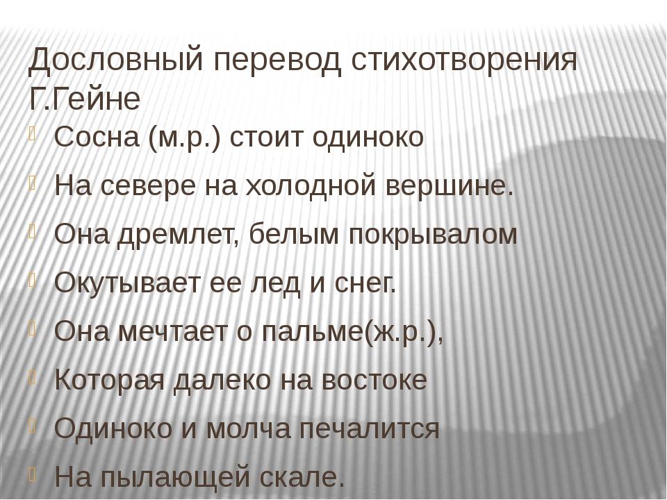 Дословный перевод стихотворения Г.Гейне Сосна (м.р.) стоит одиноко На севере...