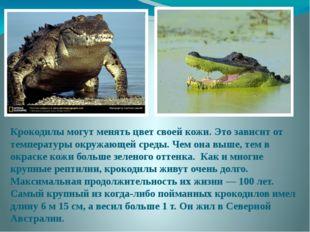 Крокодилы могут менять цвет своей кожи. Это зависит от температуры окружающей