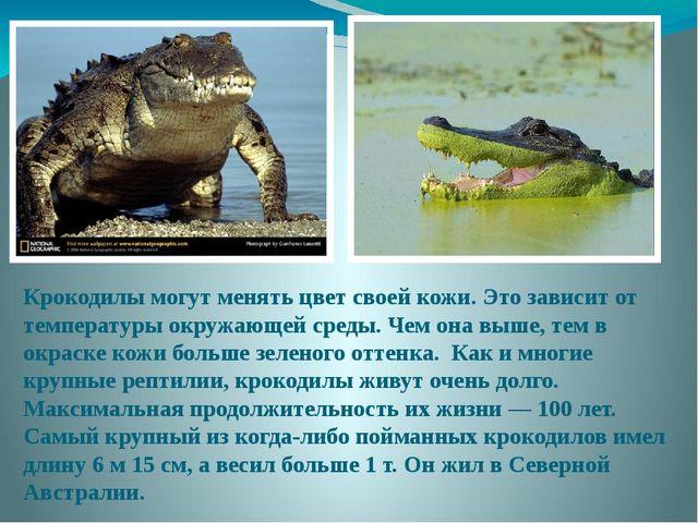 Крокодилы могут менять цвет своей кожи. Это зависит от температуры окружающей...