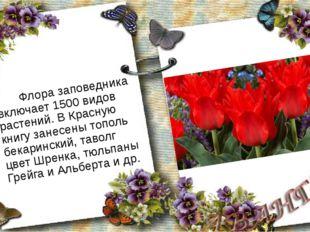 Флора заповедника включает 1500 видов растений. В Красную книгу занесены топ