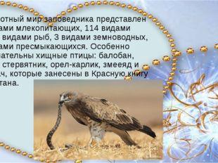 Животный мир заповедника представлен 42 видами млекопитающих, 114 видами пти