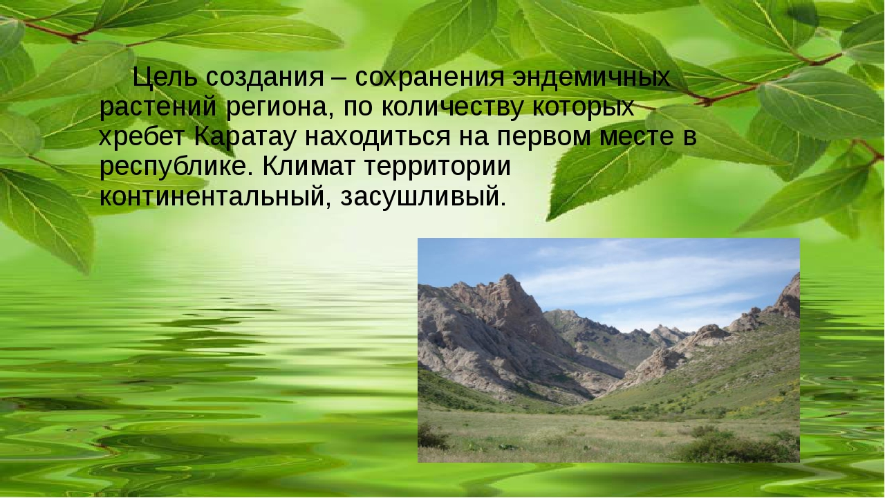 Цель создания – сохранения эндемичных растений региона, по количеству которы...