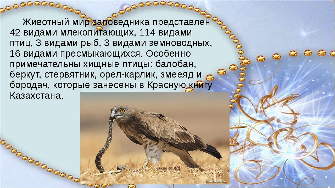 Животный мир заповедника представлен 42 видами млекопитающих, 114 видами пти...