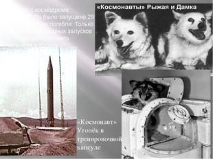 Всего с космодрома Капустин Яр было запущено 29 собак, 8 из них погибли. Толь