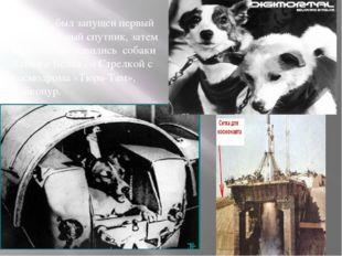 .В 1957г. был запущен первый искусственный спутник, затем в космос отправилис