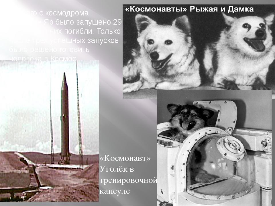 Всего с космодрома Капустин Яр было запущено 29 собак, 8 из них погибли. Толь...