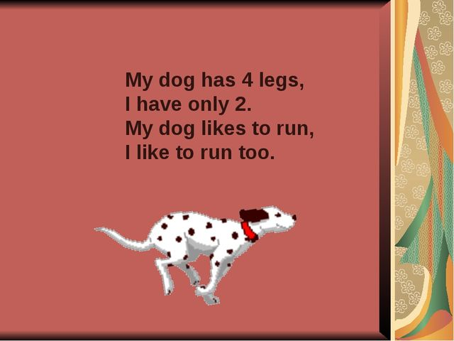My dog has 4 legs, I have only 2. My dog likes to run, I like to run too.