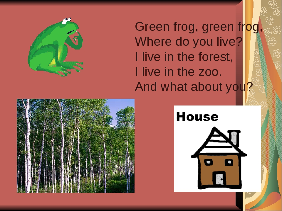 Green frog, green frog, Where do you live? I live in the forest, I live in th...