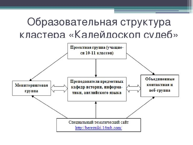 Образовательная структура кластера «Калейдоскоп судеб»