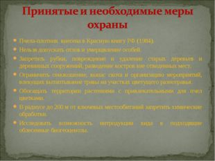 Пчела-плотник внесена в Красную книгу РФ (1984). Нельзя допускать отлов и уме