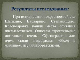 При исследовании окрестностей сел Шапкино, Варварино, Степанищево, Краснояро