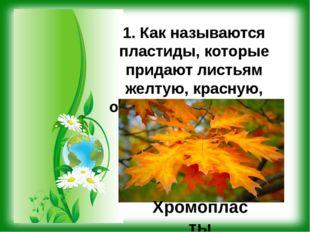1. Как называются пластиды, которые придают листьям желтую, красную, оранжеву