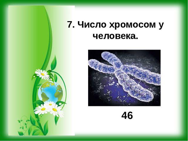 7. Число хромосом у человека. 46