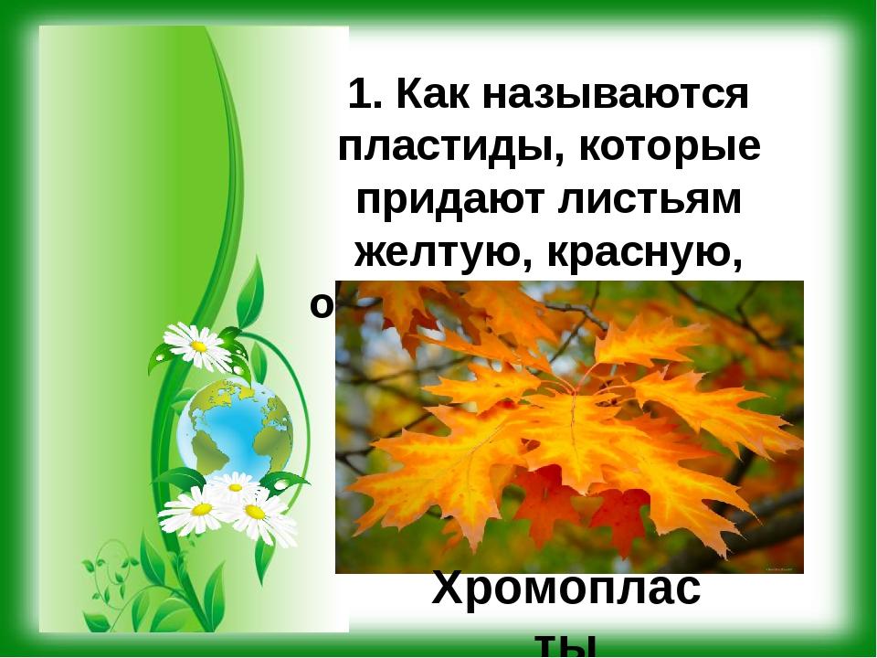 1. Как называются пластиды, которые придают листьям желтую, красную, оранжеву...