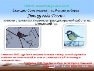 Ежегодно Союз охраны птиц России выбирает Птицу года России, которая становит