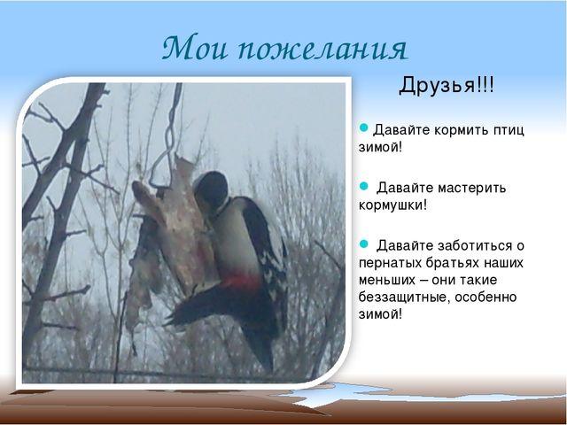 Мои пожелания Друзья!!! Давайте кормить птиц зимой! Давайте мастерить кормушк...
