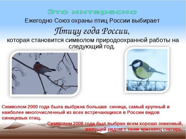 Ежегодно Союз охраны птиц России выбирает Птицу года России, которая становит...