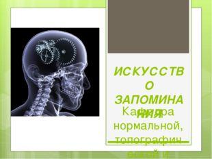 ИСКУССТВО ЗАПОМИНАНИЯ Кафедра нормальной, топографической и клинической анато