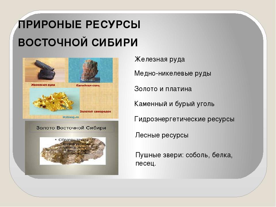 ПРИРОНЫЕ РЕСУРСЫ ВОСТОЧНОЙ СИБИРИ Железная руда Медно-никелевые руды Золото...