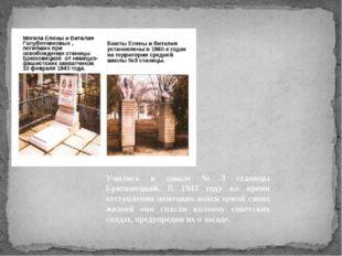 ВИТАЛИК И ЛЕНА ГОЛУБЯТНИКОВЫ Учились в школе № 3 станицы Брюховецкой. В 1943