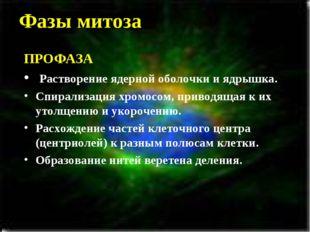 Фазы митоза ПРОФАЗА Растворение ядерной оболочки и ядрышка. Спирализация хром