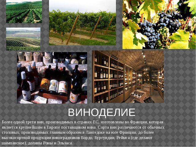 ВИНОДЕЛИЕ Более одной трети вин, производимых в странах ЕС, изготовлены во Фр...