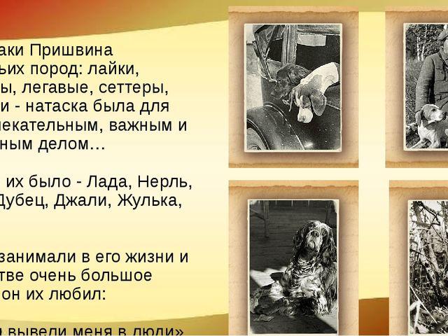 Все собаки Пришвина охотничьих пород: лайки, пойнтеры, легавые, сеттеры, спан...