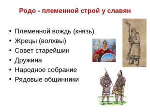 Родо - племенной строй у славян Племенной вождь (князь) Жрецы (волхвы) Совет
